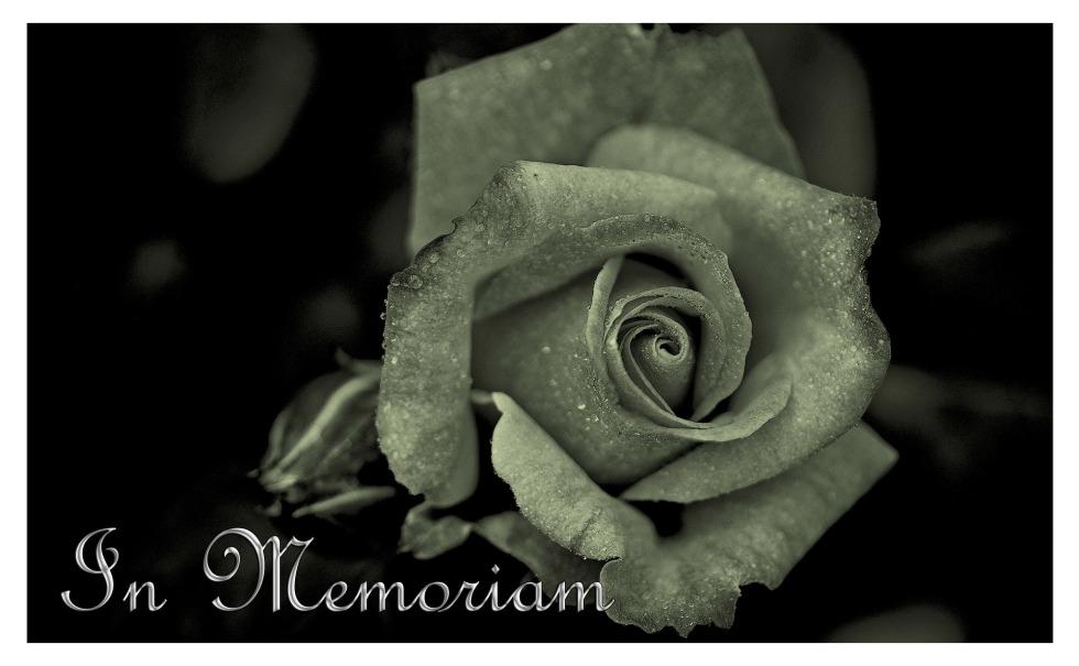 mourning-108781_1920