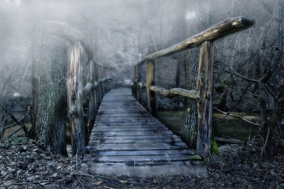 a photo of a bridge in the fog